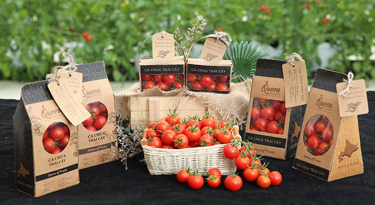 cà chua trái cây